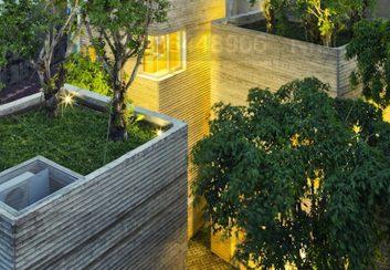 Thiết kế Ngôi nhà dành cho cây xanh